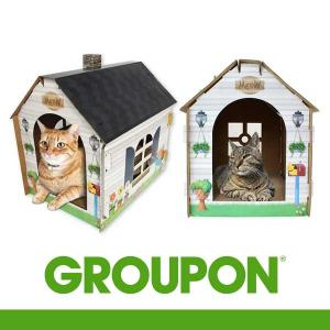 43% Off Scratch & Play Cat House with Bonus Catnip