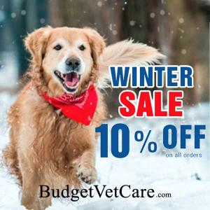 10% Off All Orders With Code in Winter Sale