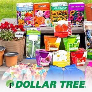 $1 Garden Supplies