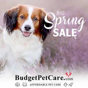 Big Spring Sale: Up tp 10% Off All Orders + 10% Cashback