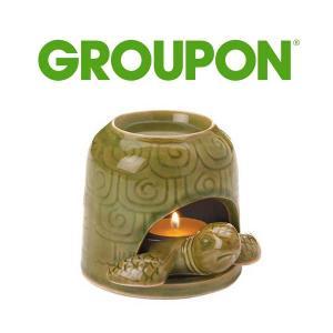 14% Off Green Turtle Oil Warmer