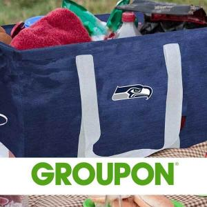 28% Off Logo Brands NFL Collapsible Picnic Caddy Tote
