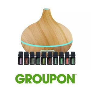 Up to 57% Off Ultrasonic Diffuser with 10 Bottles of Pure Essential Oils