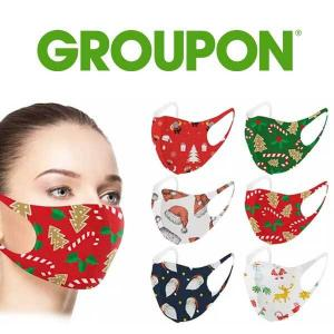 76% Off 6 Pack Holiday-Themed Washable Face Masks