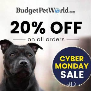 Cyber Monday Sale: 20% Off All Orders