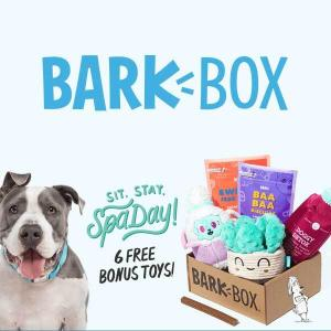 Free Extra Toys With Multi-Month Subscription Purchase