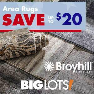 20% Off Select Area Rugs