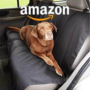 15% Savings on Amazon Basics Pet Essentials
