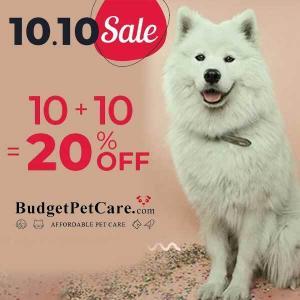 10.10 Sale 20% Off