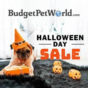 15% Off Halloween Day Sale