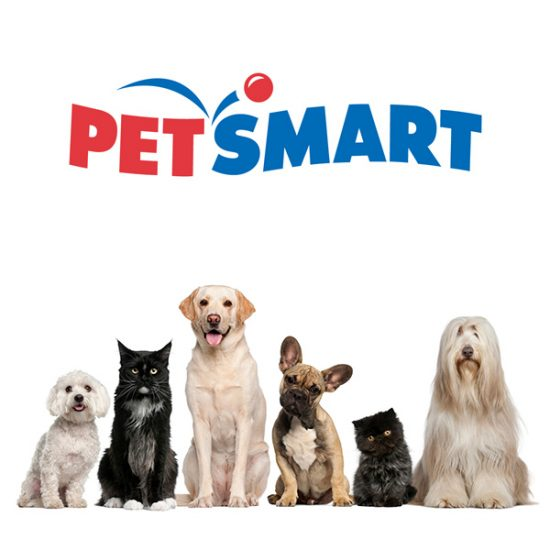 Image result for petsmart