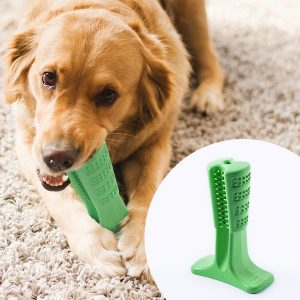 69% Off Bristly Brushing Stick Toothbrush for Dogs