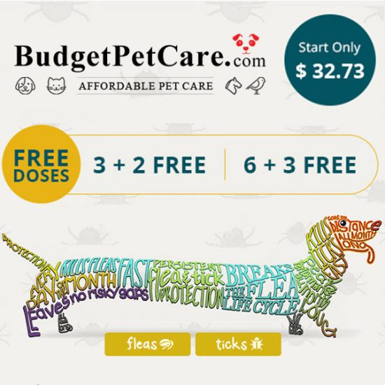 B3G2 Free or B6G3 Free Simparica Chewables for Dogs