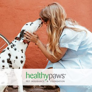 Up to 5% Off Pet Insurance Premium Pricing