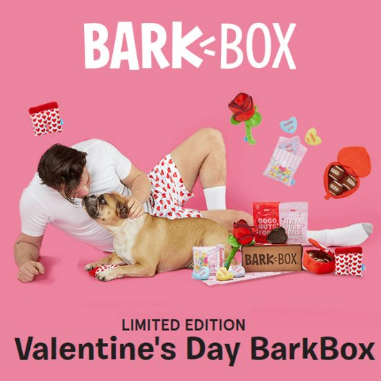 Limited Edition Valentine's Day BarkBox for Dogs