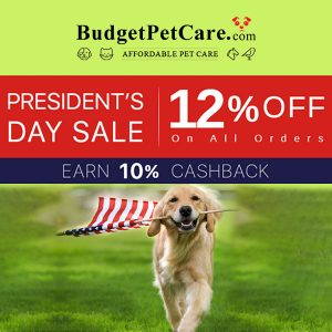 Presidents' Day Sale: 12% Off All Orders