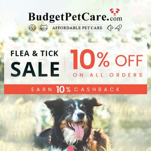 10% Off All Orders and Earn 10% Cashback