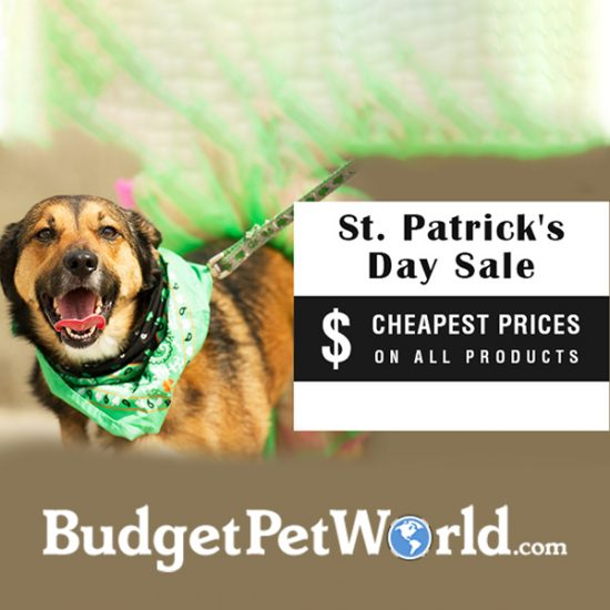 Massive Savings Sitewide in St. Patrick's Day Sale