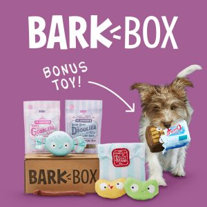 FREE Bonus Toys for the Lifetime of Your Subscription