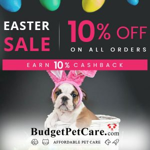 Easter Sale: 10% Off All Orders + 10% Cashback w/ Code