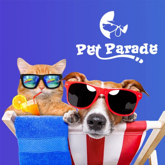 Win $2,000 in Pet Prizes With a Cute Photo of Your Pet
