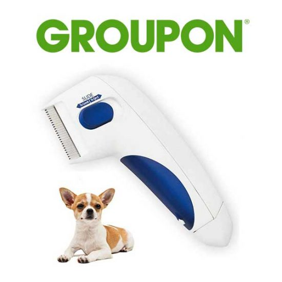 63% Off Electric Flea Comb for Cats and Dogs